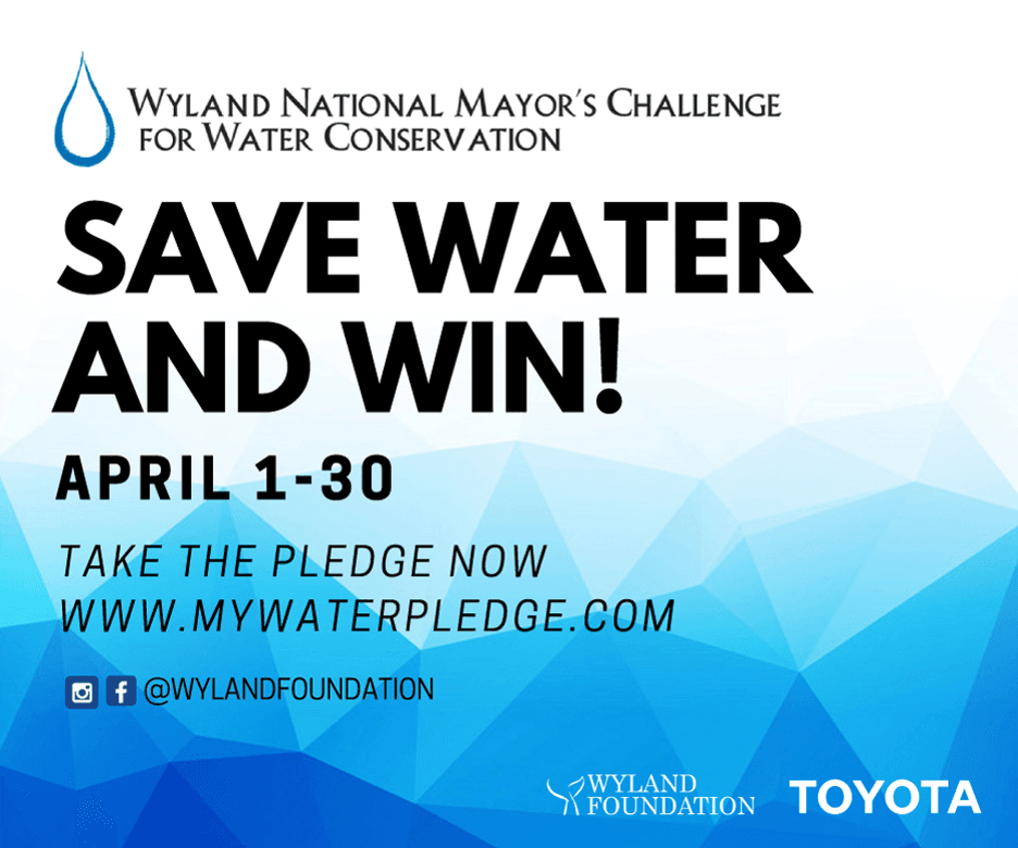 Wyland Water Challenge 2019 Opens in new window